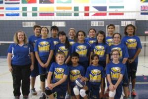 Volleyball team use